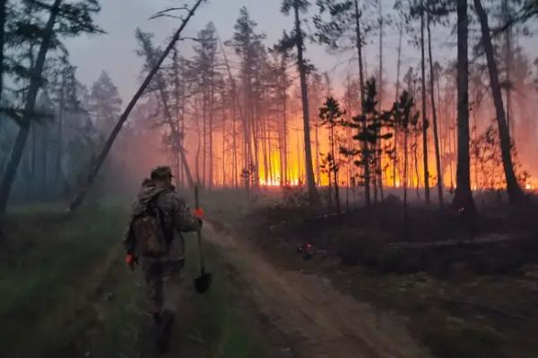 U Sibiru zbog nezapamćene vreline bukte požari na sve strane